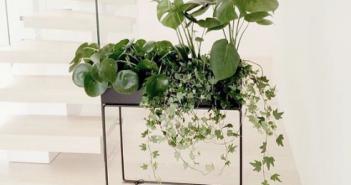 Trend: plantekasse fra Ferm Living